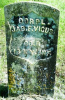 James F. Vigus headstone